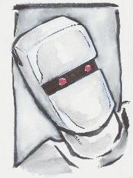 Rom-Headshot